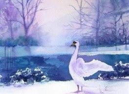 Janet Gledhill January 2013 006