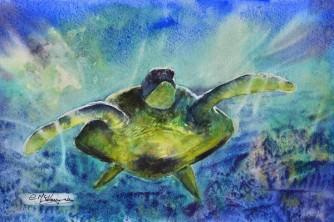 Green Bayou Turtle (Watercolour)