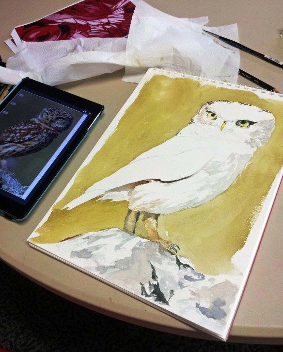 Owls K Oct 2018.jpg