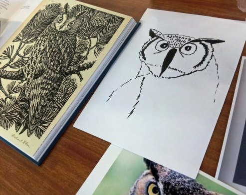 Owls N Oct 2018.jpg