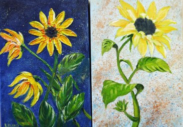 Sunflowers R Feb 2019 (6).jpg