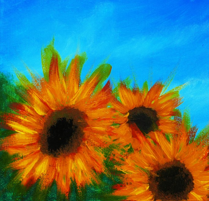 Sunflowers R Feb 2019 (7).jpg
