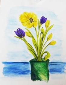 Tulips C Apr 2019.jpg