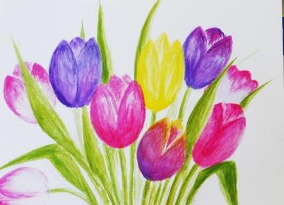 Tulips D Apr 2019.jpg