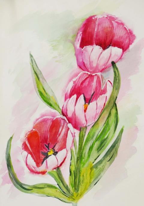 Tulips J Apr 2019.jpg