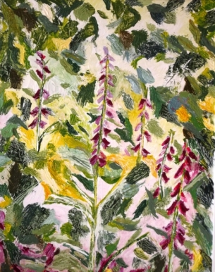 BO Foxgloves 2019.jpg
